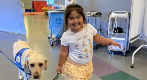 Trudy, the Facility Dog, Providing Support and Motivation for Patients in Napa