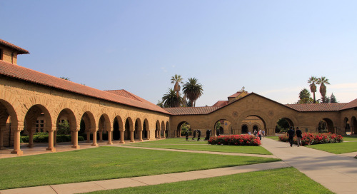Harvard vs. Stanford: Business School Showdown