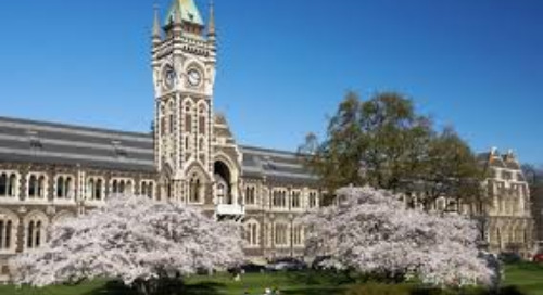 Tutor Q&A: Why I Chose the University of Otago