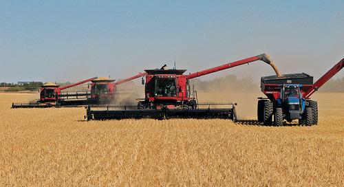 2017 Report: Quality of Western Canadian Malting Barley