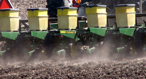 Seeding and Planting Dates