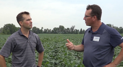 Trends in Soybean Weed Control