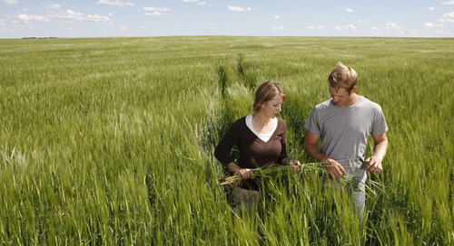 Get the Most Out of a Crop Tour
