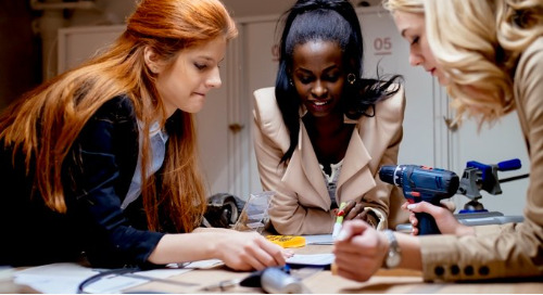 87% agree it is important to increase diversity and inclusion in STEM fields.