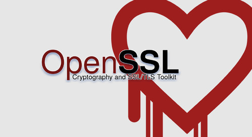 How the Heartbleed Vulnerability Shaped  OpenSSL as We Know It