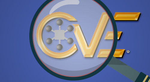 What Is Common Vulnerabilities and Exposures Glossary (CVE)