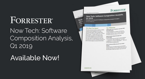 Now Tech: Software  Composition Analysis,  Q1 2019