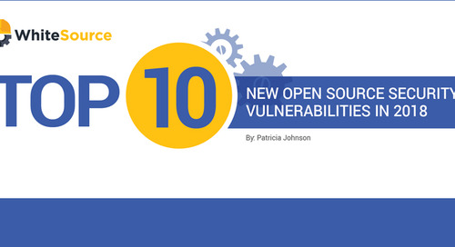 Top 10 New Open Source Vulnerabilities of 2018