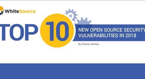 Top 10 New Open Source Vulnerabilities of 2018