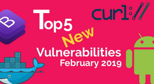 Top 5 New Open Source Vulnerabilities in February 2019