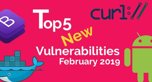 Top 5 New Open Source Vulnerabilities in February 2019
