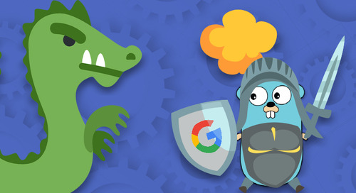 Top 5 Go Vulnerabilities That You Should Know