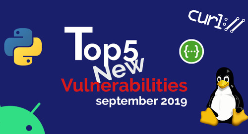 Top 5 New Open Source Security Vulnerabilities in September 2019