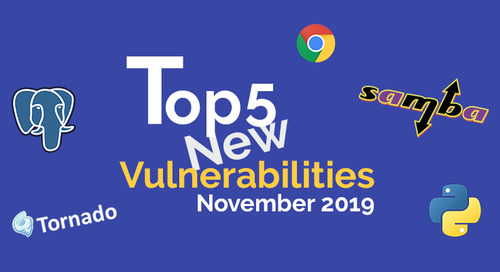 Top 5 New Open Source Security Vulnerabilities in November 2019