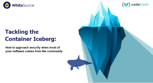 Tackling the Container Iceberg
