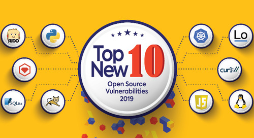 Top Ten New Open Source Security Vulnerabilities in 2019