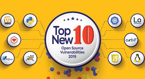 Top Ten Open Source Security Vulnerabilities in 2019