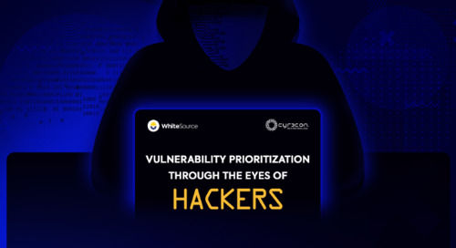 Vulnerability Prioritization Through The Eyes Of Hackers