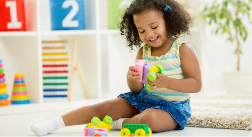 Big Box Stores And Niche Toy Manufacturers Enter The Toy Subscription Box Market To Leverage Sales And Increase Brand Awareness