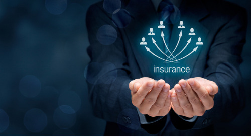 4 Weird Insurance Policies: Targeted Plans For Niche Consumers