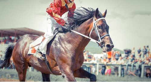 Kentucky Derby: The Power Of The Race's Audience And Marketing Potential