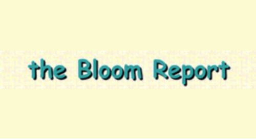 DMS In The Bloom Report: On Toy Brands Selling DTC To Boost Customer Acquisition