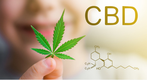 The CBD Market: Who, What, Where, Why & How