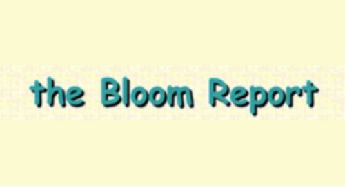 DMS In The Bloom Report On Marketing Toys To Grandparents