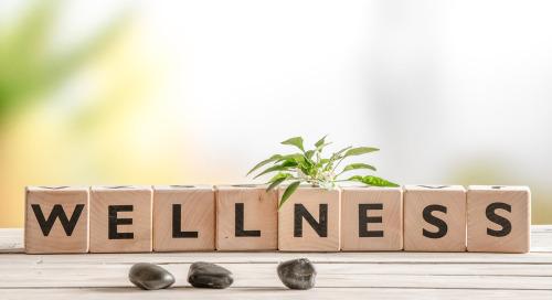 Wellness Offerings Helps Brands Across Verticals Acquire More Customers