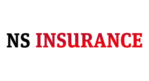 DMS Featured On NSInsurance.com After Acquisition Of UE.co