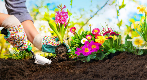 Multichannel Marketing Supports The Customer Acquisition Needs Of Spring Clean-Up Brands