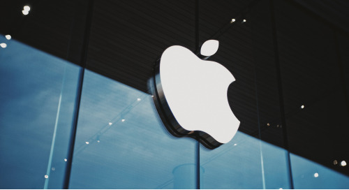 What Will An Apple Search Engine Look Like?