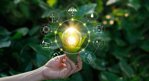 From QSR To Beauty, Brands Embrace Environmental Sustainability In Latest CSR Campaigns