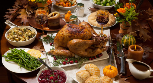 Don't Worry About Your Thanksgiving Dinner: It's Insured