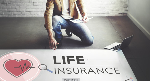 Insurance Brands Drive Engagement And Enrollments With Digital Advertising Innovations