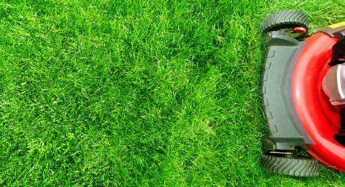 Why Lawn & Garden Brands Should Take Early Action To Engage Consumers