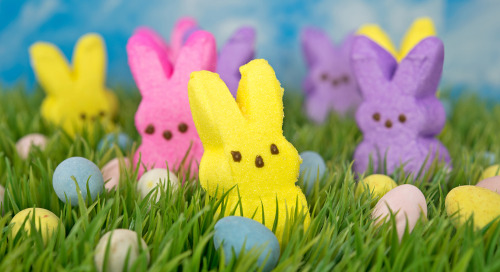 Easter Candy Advertising: Ideas For Promoting Sweet Treats