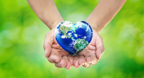 3 Nonprofits Leverage Earth Day Excitement To Grow Subscriber Lists And Share Their Missions
