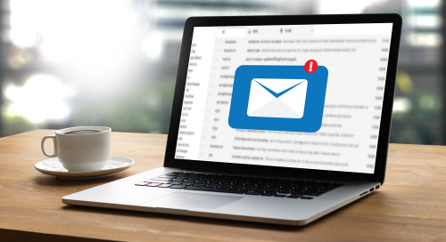Branded Email Campaigns Deliver Expansive Reach & Control