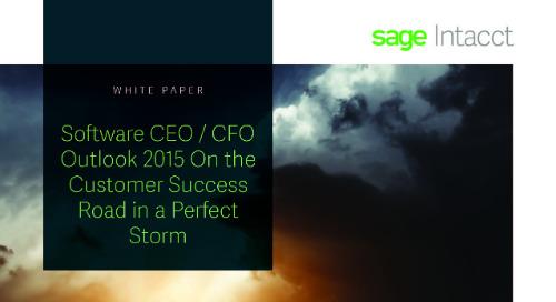 Software CEO CFO Outlook