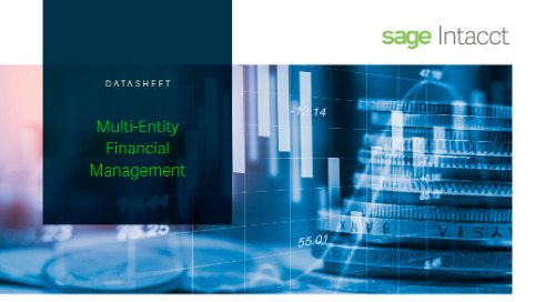 Multi Entity Financial Management
