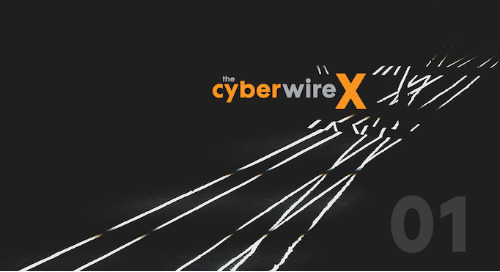 CyberWire X - Episode 5: Complementary colors: teaming tactics in cybersecurity.