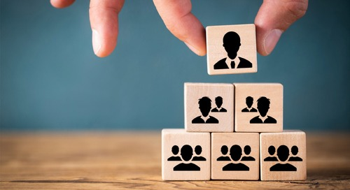 How Does Hierarchy in a Team Impact Team Effectiveness?