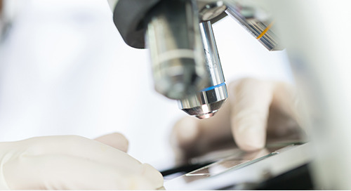 Negligent identification of biopsy tissue