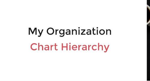 My Organization Chart Hierarchy