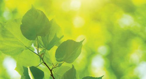 Climate Change Scenarios: Impact on Funding Risk & Asset Allocation (UK)