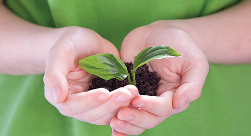 Key Considerations for Responsible Investing Initiatives