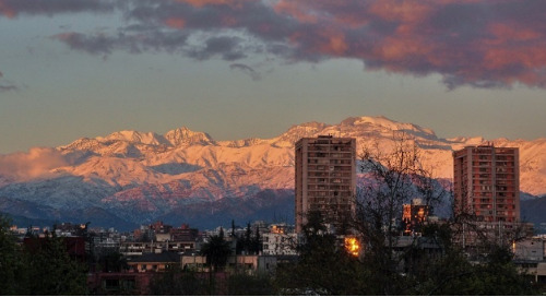 Santiago, Chile English Teaching Q and A with Alicia Levinao Lloyd