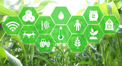 Wireless Sensor Networks in Agriculture