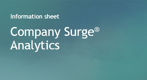 Company Surge® Analytics